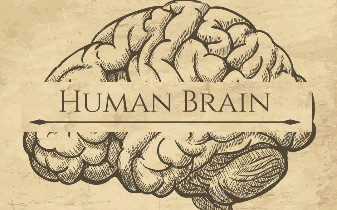 Anatomia di una mentalità